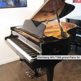 Steinberg WS-T166 Grand Piano